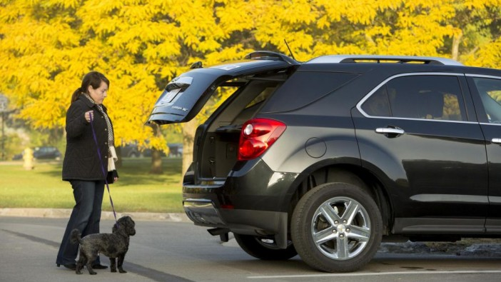 How dogs dictate car buying choices